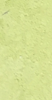 Licarire Verde L8713-5-P2.5L