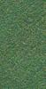 V8740TEXA606-P1.5L Forest
