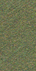 V8740TEXA605-P1.5L Forest