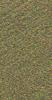 V8740TEXA604-P1.5L Forest