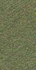V8740TXFA605-P1.5L Forest