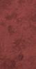 V8734-9-P1.5L Arabica